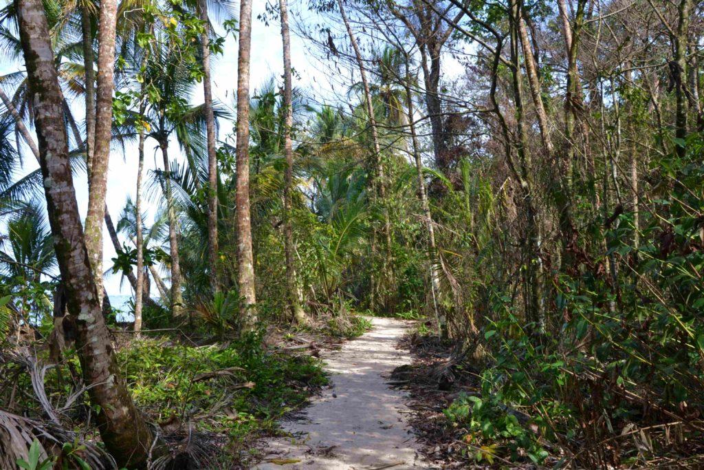 Sentiers du parc Cahuita