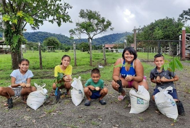Enfant reforestation